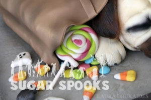 SugarSpooksPugs-close-3-wm-web